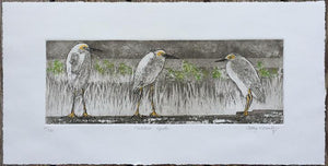 """Huddled Egrets"" by Cathey December"