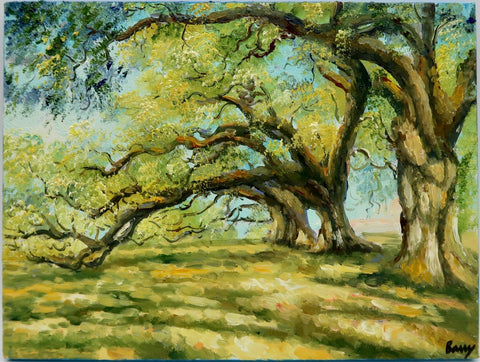 """Oaks"" by Barry Ma"