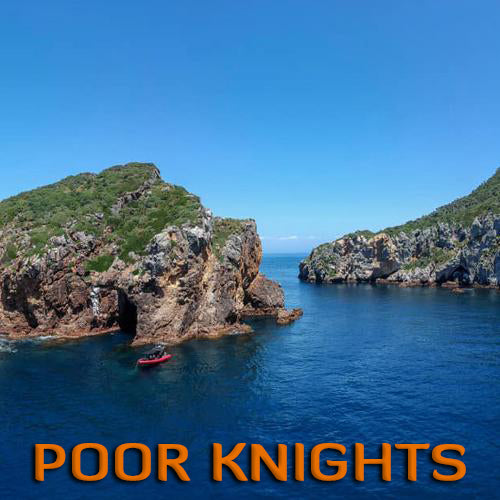 Poor Knights Island (2 Dive Trip)