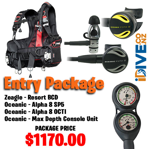 Entry Scuba Package