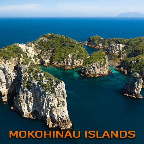 Mokohinau Islands Dive Trip (2 Dive Trip)