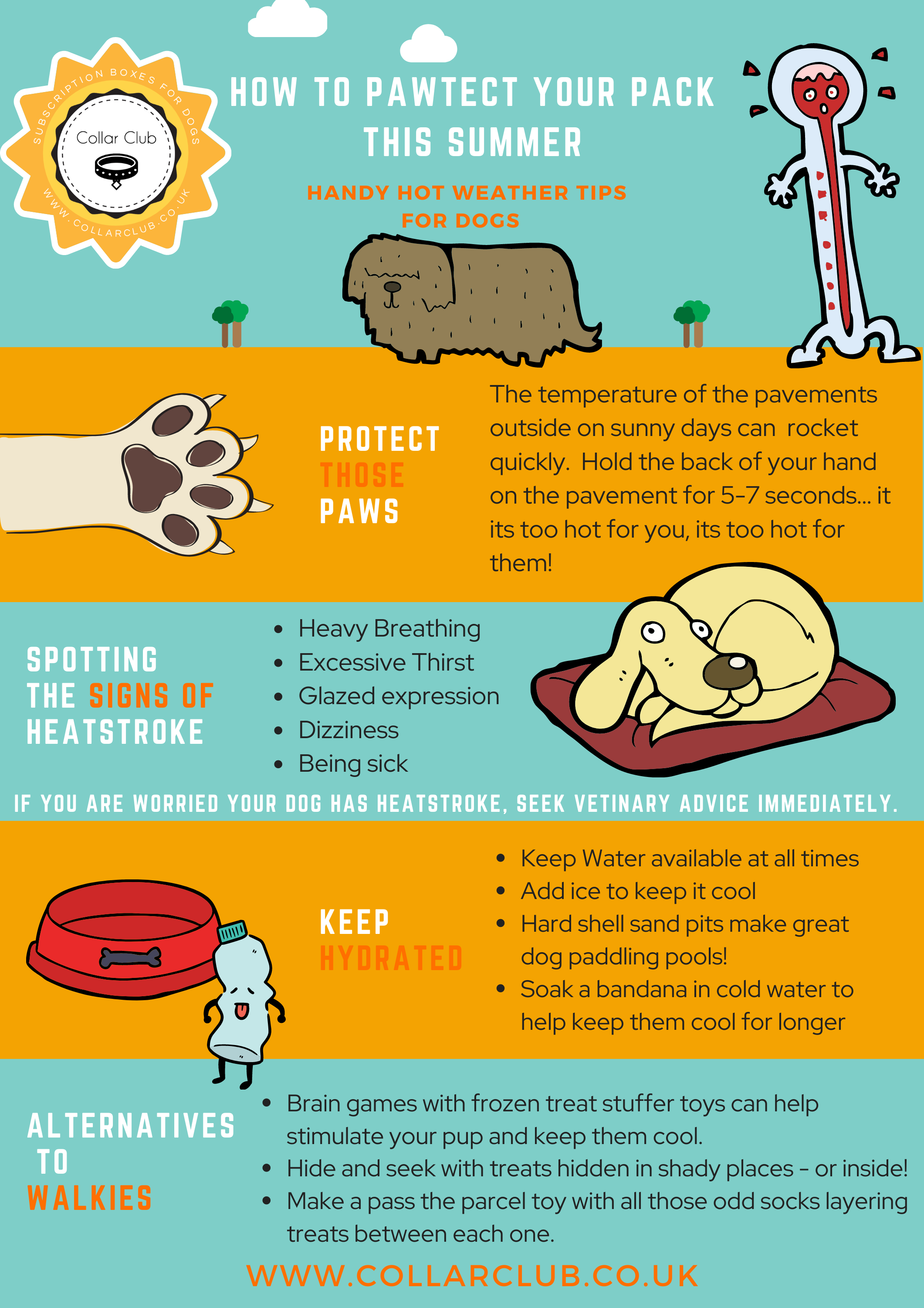 Top Tips For Keeping Your Dog Safe in Summer