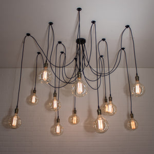 12 Pendant Spider Light - Loewen Design Studios