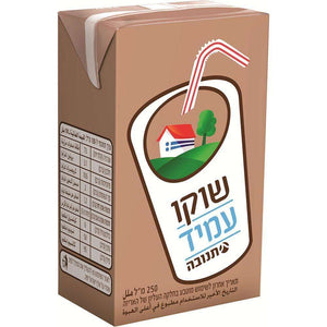 Tnuva UHT Chocolate Milk 250 ml Pack of 5