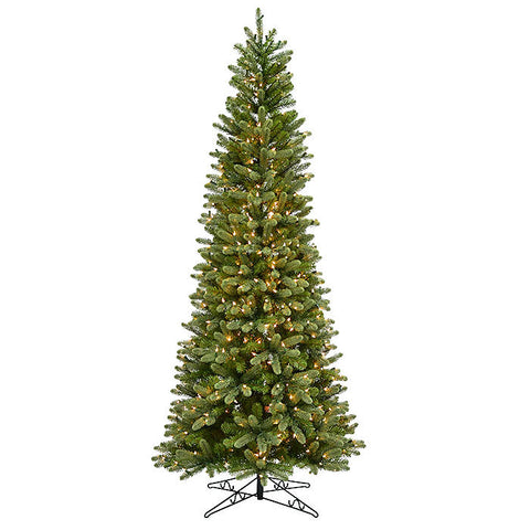 Hazelton Douglas Fir (Slim Tree)