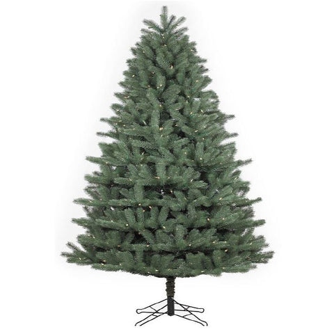 Douglas Fir Green Tree