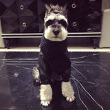 Luxury Winter Pets Scarf - Shop AWESOME!