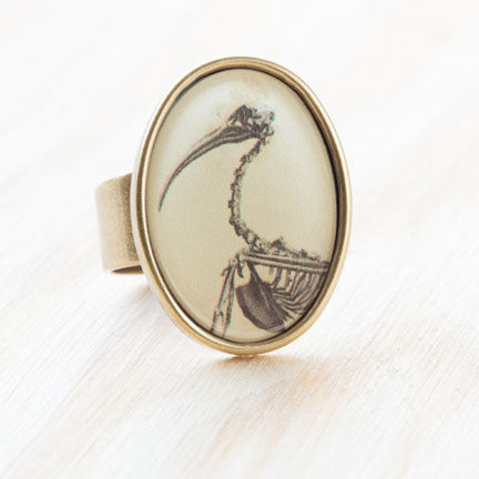 Ibis Bird Physiology Ephemera Ring, Resin on Antiqued Bronze by Beijo Brasil