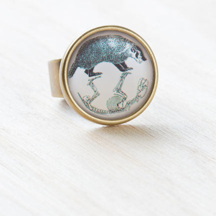 Badger Physiology Ephemera Ring, Resin on Antiqued Bronze by Beijo Brasil