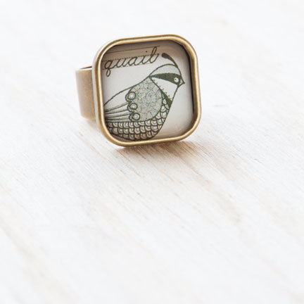 quail ephemera in resin adjustable ring at  jennymonkey