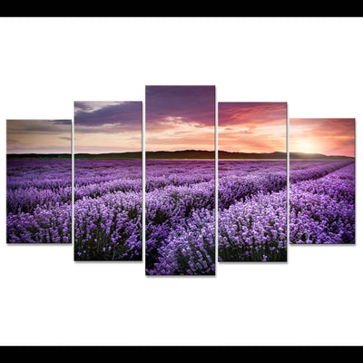PURPLE LAVENDER FLOWER FARM - Ole Canvas