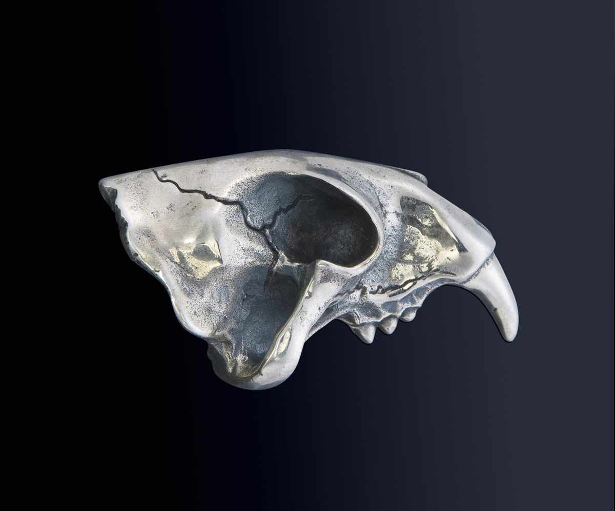 Sabre Tooth Ring