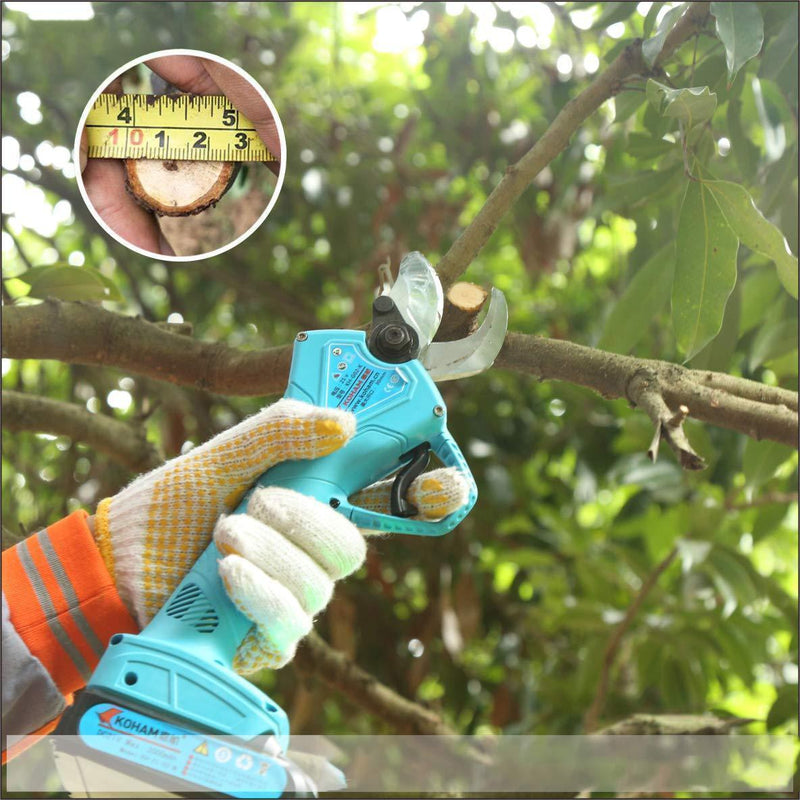 Branch Scissor & Pruning Shears