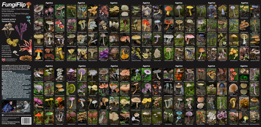 FungiFlip: A Pictorial Guide to Tasmanian Fungi