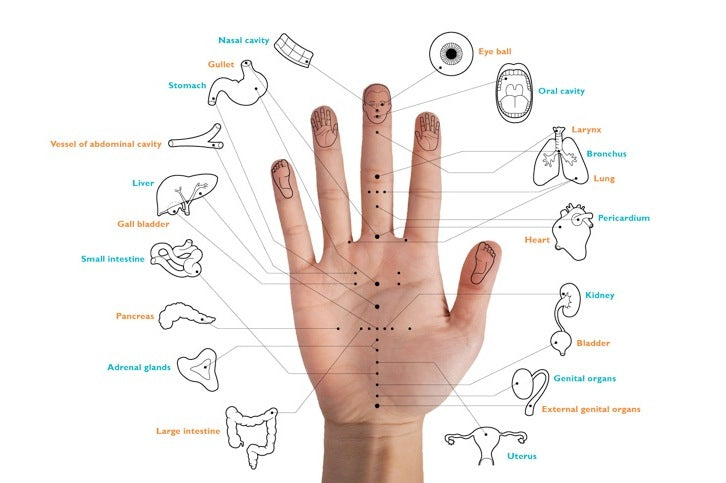 acupuncture guide for hand