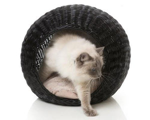 FUZZYARD JAVA CAT POD BLACK RATTAN WITH CREAM CUSHION