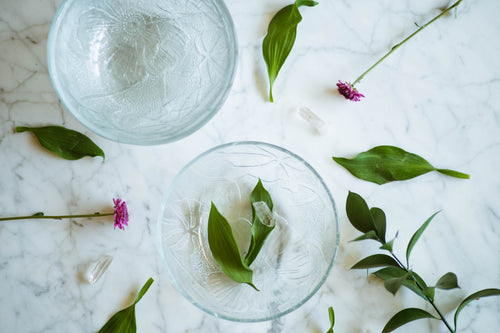 Monstera Leaf + Flower Glass Bowl Set