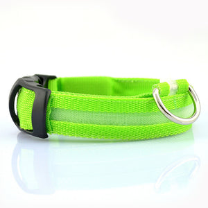 PuppySafe LED Dog Collar