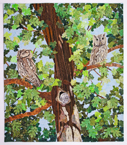 Screech Owl Family by Sara Sharp