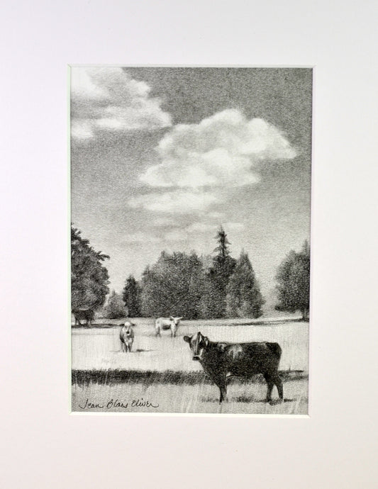 Graphite drawing of cows by Jean Blais Oliver
