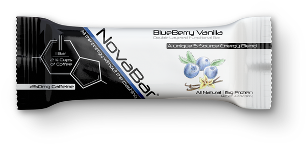 BlueBerry Vanilla - 12 Pack