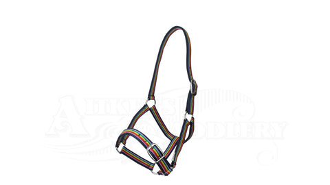 rainbow headstall