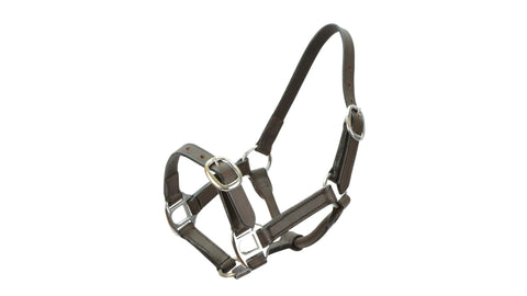 Showcraft Leather Foal Halter