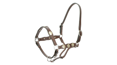 Scalloped Western Headstall brown