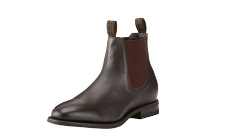 Ariat stanbroke dress boot chestnut