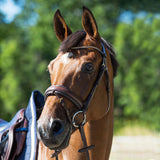 Horze Lester Bridle Brown