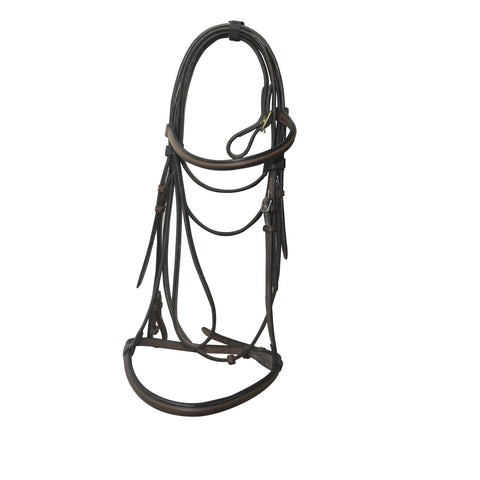 Sabre Led in Bridle with Lead