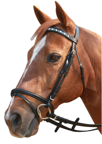 Bridle Linking Horsehead