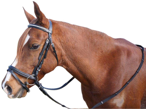Showcraft Silver Clinch Bridle