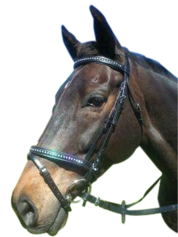 Luciana Double Jewell Bridle