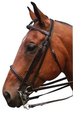 McAlister Weymouth Bridle