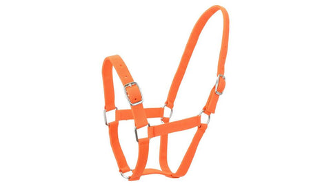 Eureka Nylon Buckle Headstall Orange