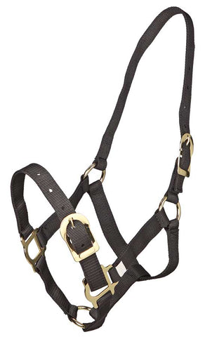Headstall Brass Fittings Black