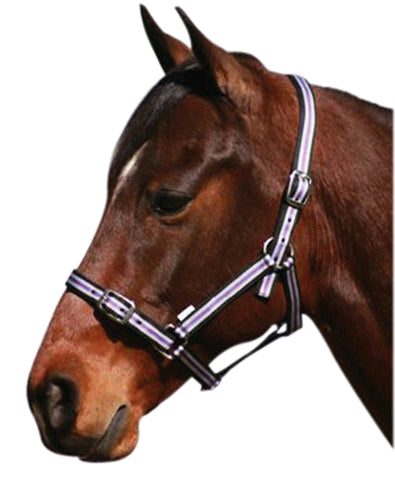 Eureka Nylon Headstall Tri Black Purple Grey