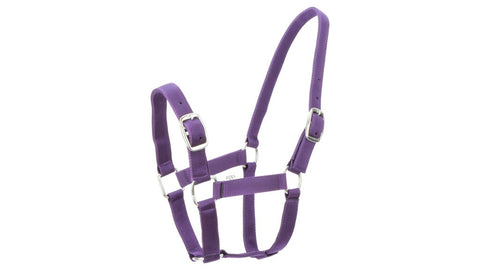 Eureka Nylon Buckle Headstall Plum