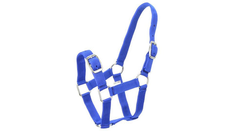 Eureka Nylon Buckle Headstall Royal Blue