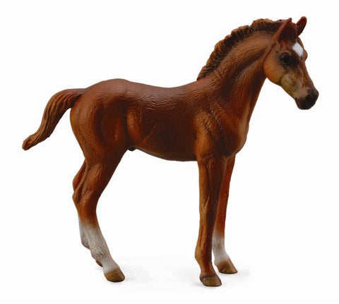 Collecta Thoroughbred Foal Standing