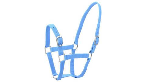 Eureka Nylon Buckle Headstall Skye Blue