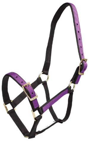Overlay Headstall Black & Purple