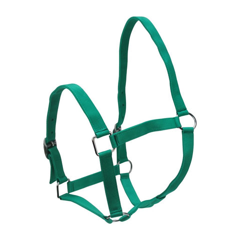 Eureka Nylon Buckle Headstall Green