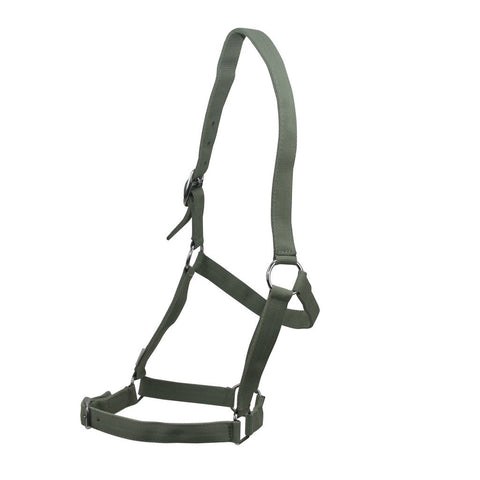 Eureka Nylon Buckle Headstall Ice Green