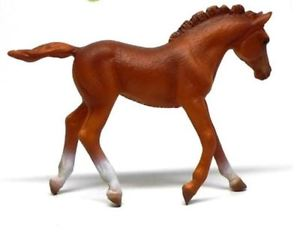 Collecta Thoroughbred Foal Walking