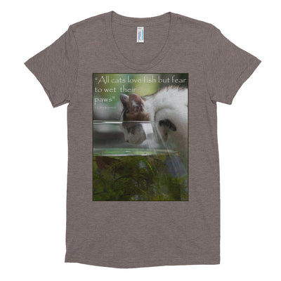 All cats love fish but fear to wet their paws – American Apparel TR301W Women's Tri-Blend T-Shirt
