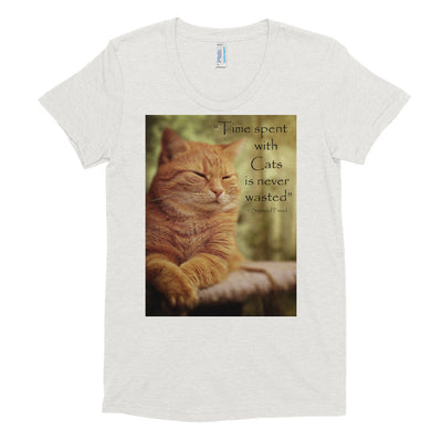 Time spent with cats is never wasted – American Apparel TR301W Women's Tri-Blend T-Shirt