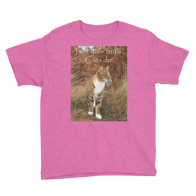Live your truth.  Cats do. – Anvil 990B Youth Lightweight Fashion T-Shirt with Tear Away Label