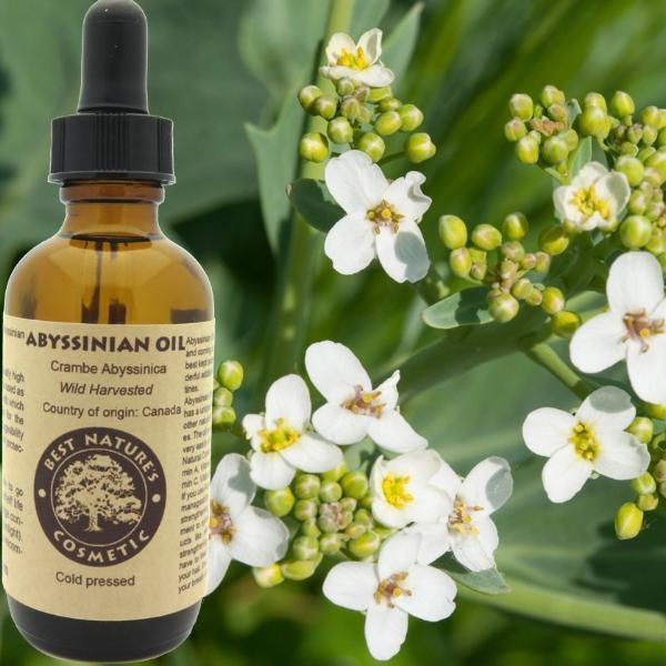 Abyssinian Oil for Supple Skin - Heavenly Skin HQ